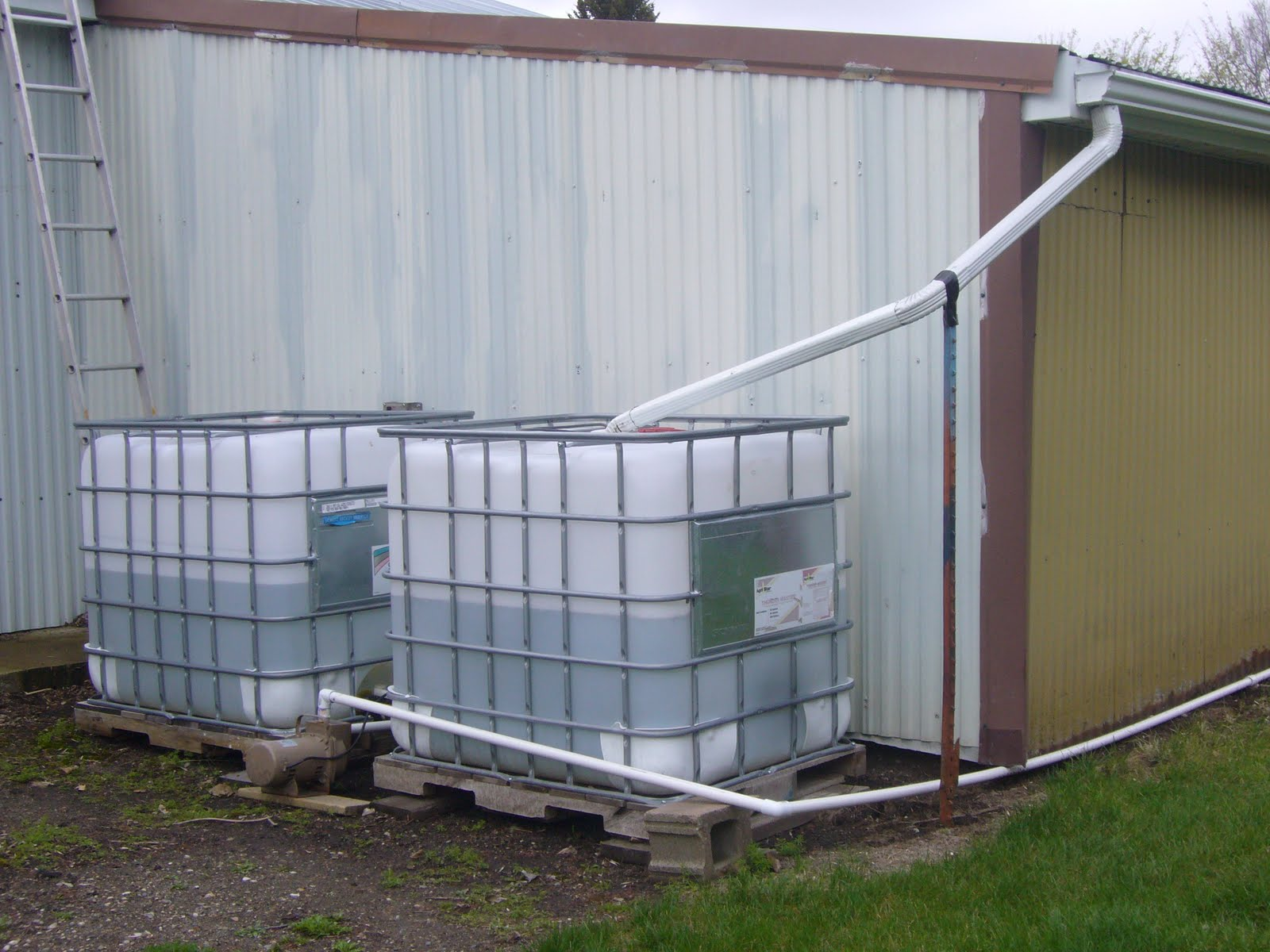 Collecting rainwater now illegal in many states for Rainwater harvesting quotes