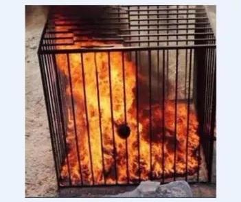 Bdsm death by burning alive