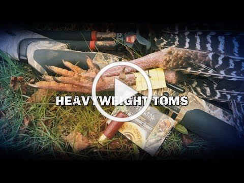 Heavyweight Toms (TEASER)